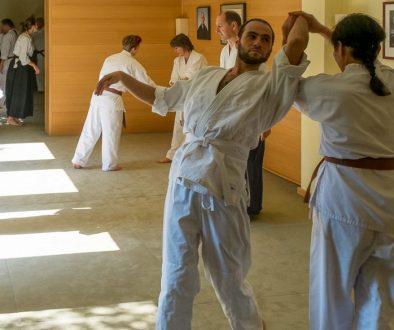 Ki-Aikido-Dojo-Rodgau-Training